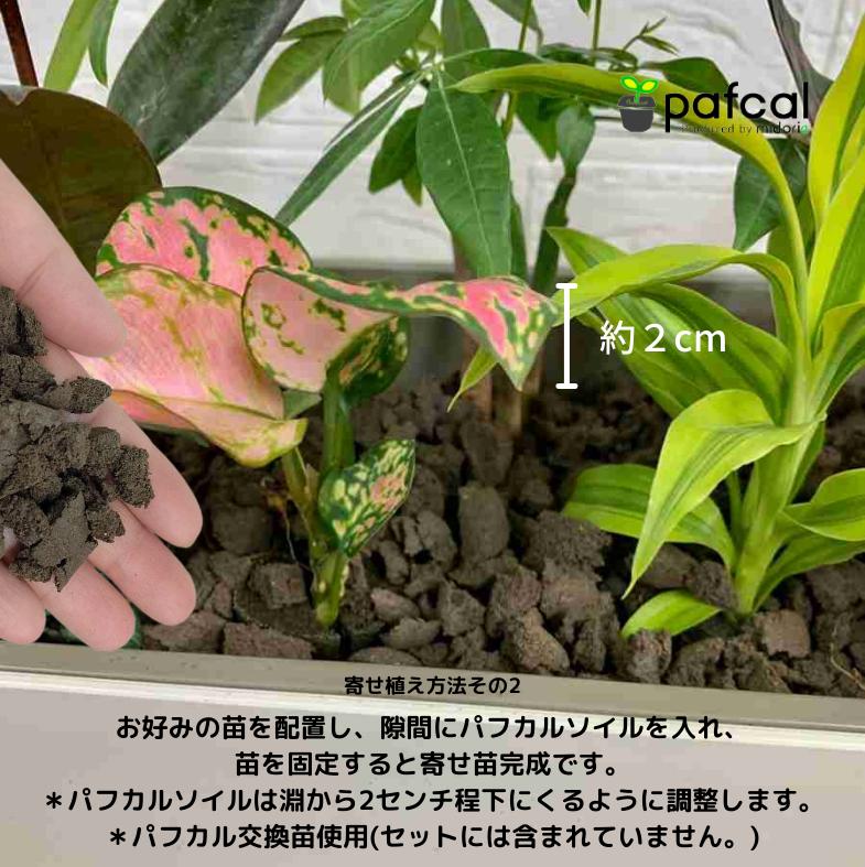 【在庫セール】 楽しみの幅が広がる Zシリーズ 502 パフカルソイルセット
