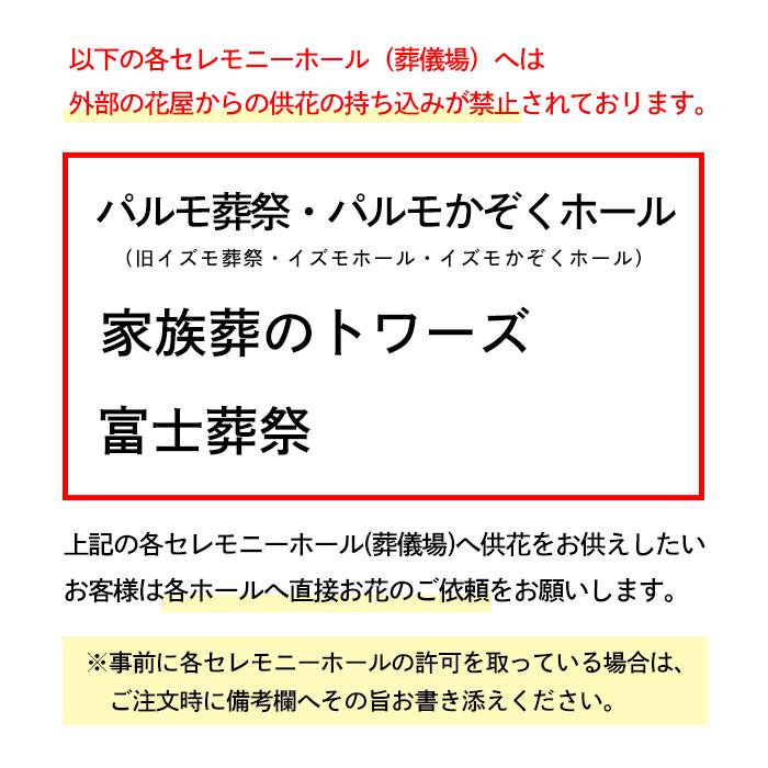 お供え・お悔み胡蝶蘭  [お届け可能エリア:豊橋市・浜松市]