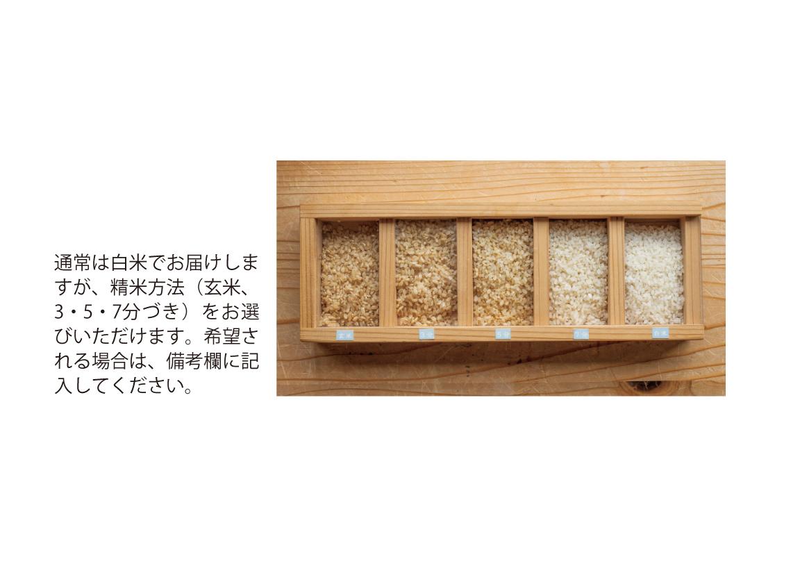特別栽培米真空パック2kg×2(ふっくりんこ)