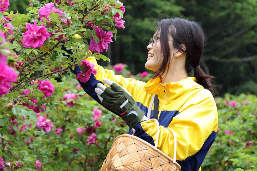rosa・rugosa バーソープ<洗顔石けん>
