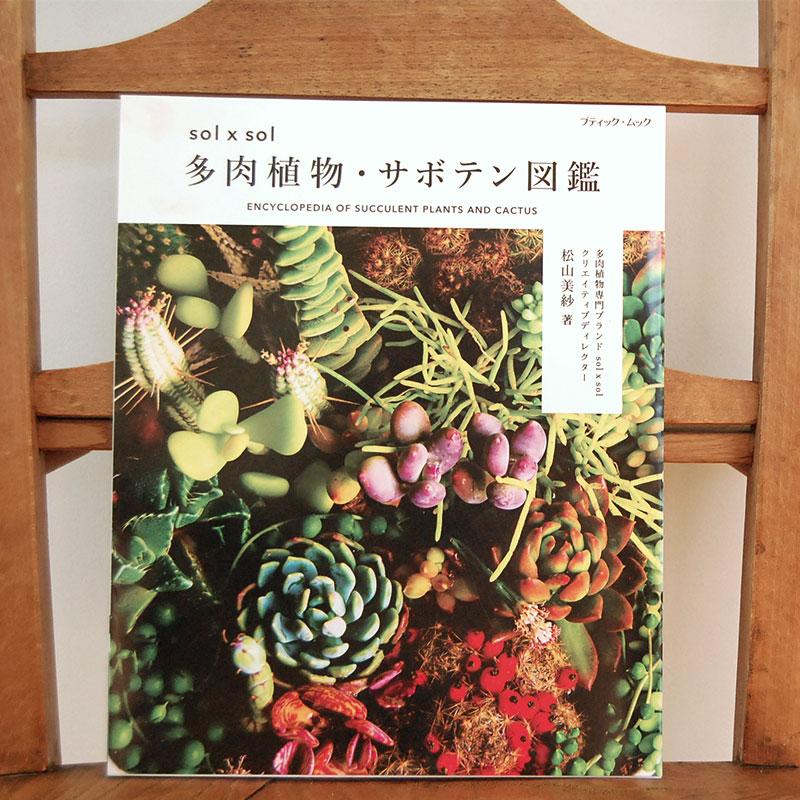 書籍 solxsol 多肉植物・サボテン図鑑