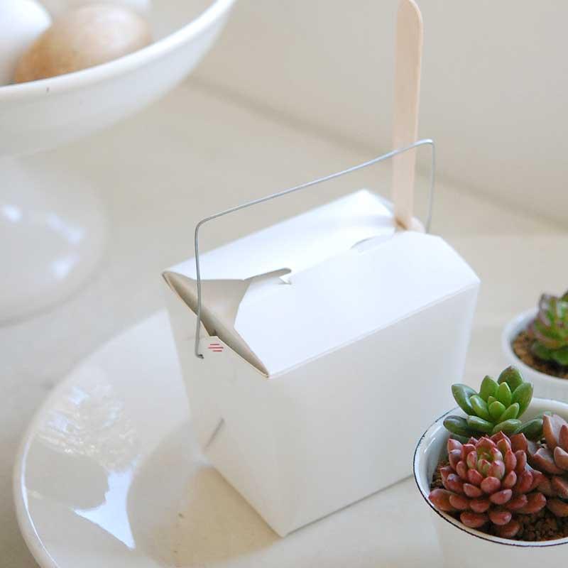 サボテンのミニ苗キット(ブレンド土sとスプーン、ボックス付き)