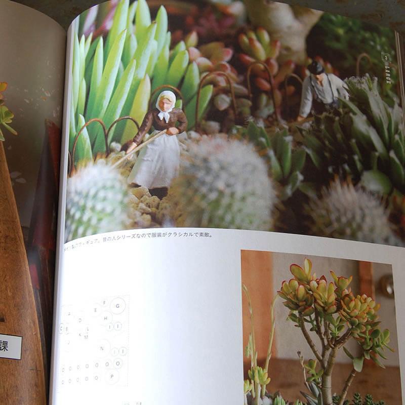 書籍solxsol  solxsolの多肉植物・サボテンの箱庭