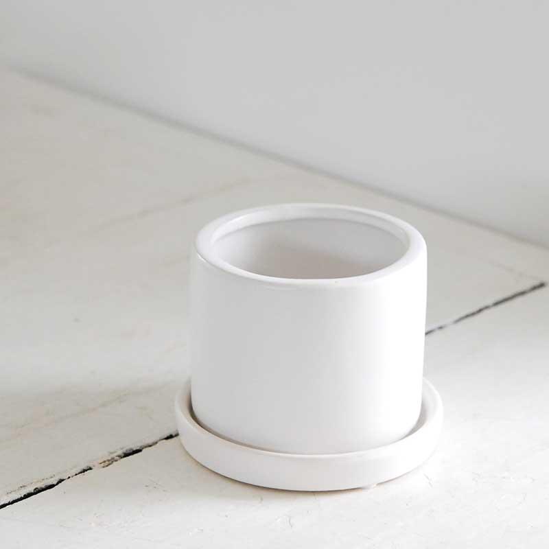 鉢 / ホワイトポットs(寸胴)