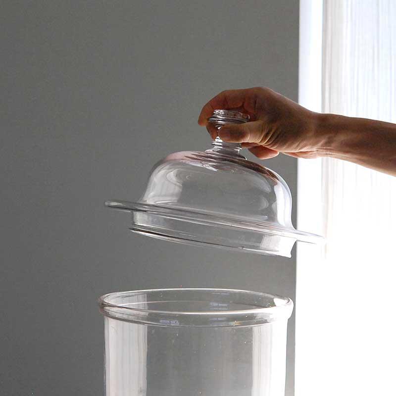 glass / 蓋物