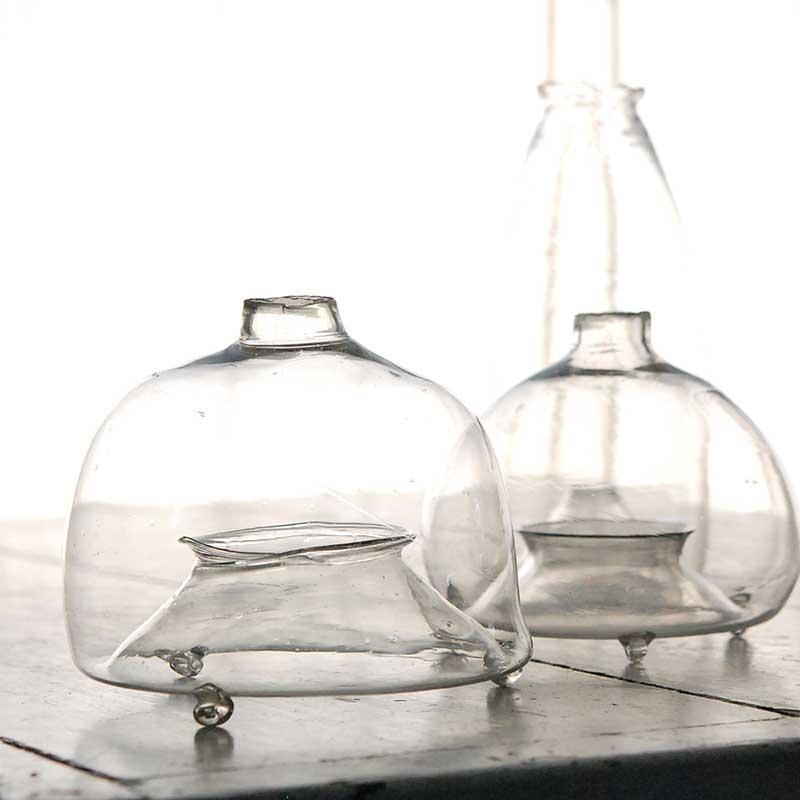 glass / 虫取りガラス