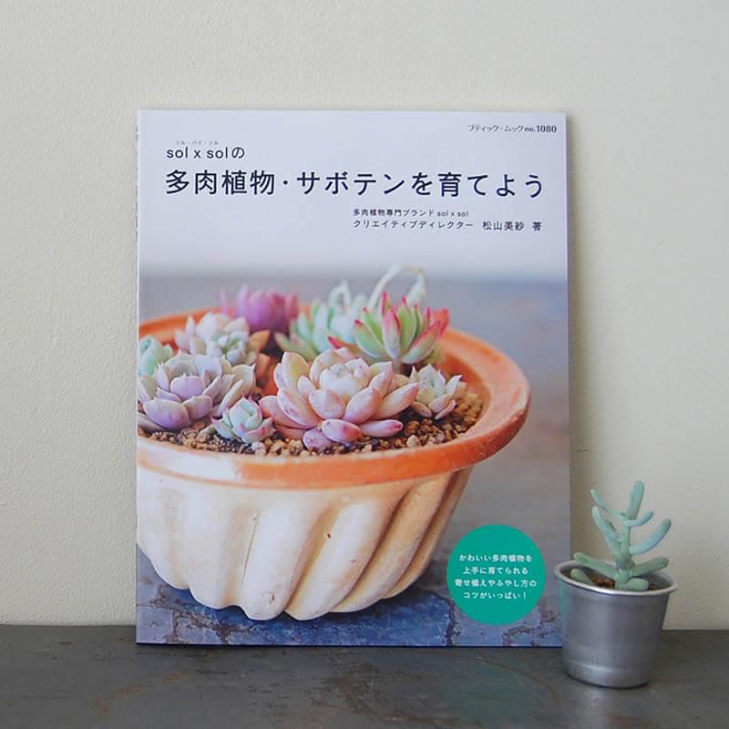 【改訂版】書籍solxsol 多肉植物・サボテンを育てよう