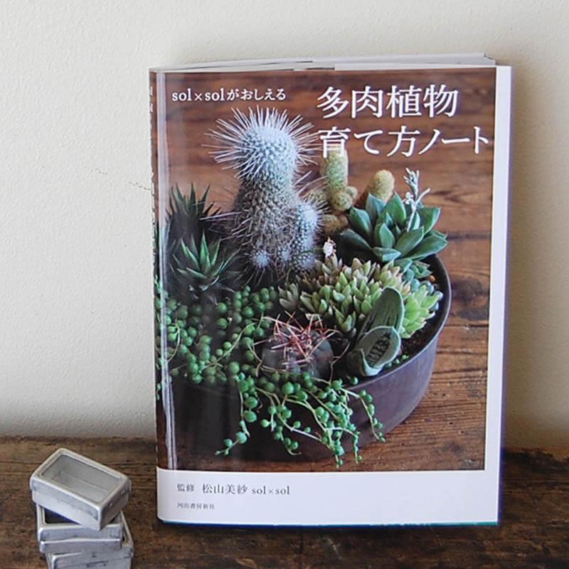 書籍solxsol solxsolがおしえる多肉植物育て方ノート