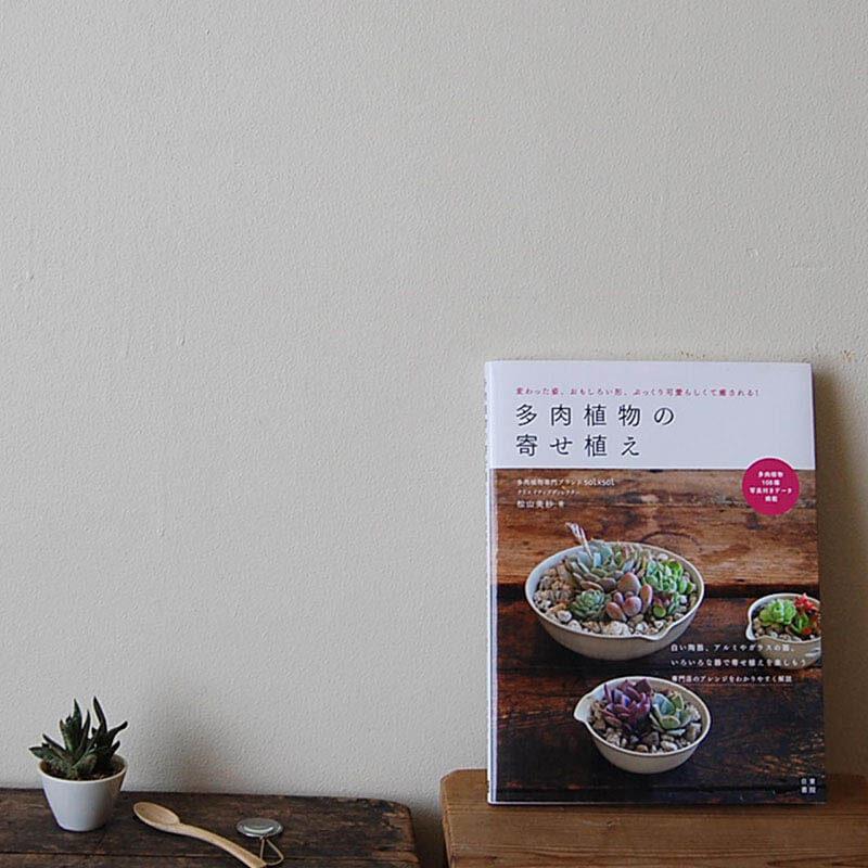 書籍solxsol 多肉植物の寄せ植え