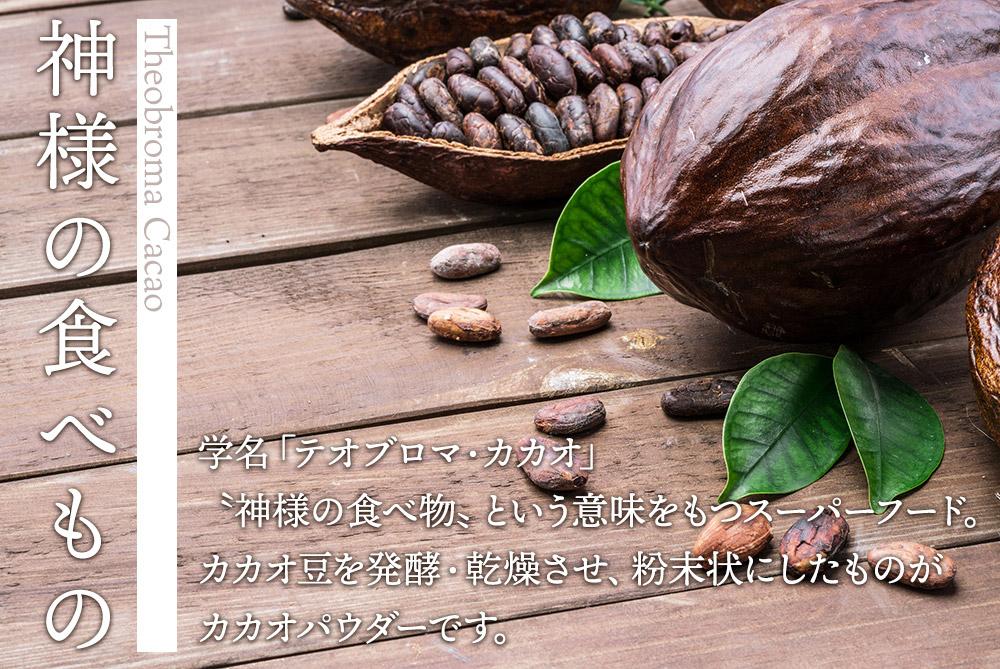 有機JAS認定 オーガニック カカオパウダー 大容量 500g  ペルー産 無添加 粉末 お徳用 カカオマス カカオニブ カカオ豆 送料無料 ココアパウダー