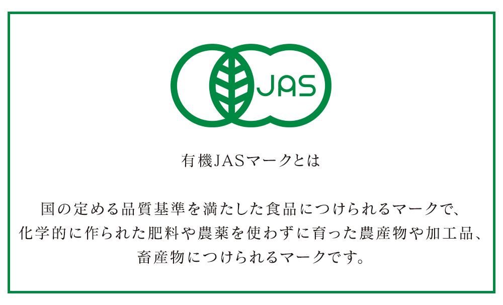 有機JAS認定 ジンジャーパウダー しょうが 粉末 500g オーガニック 送料無料 生姜 ショウガ 無添加 無着色 スーパーフード 美容 栄養 サプリ 肌荒れ スリランカ産 冷え性 大容量 お徳用