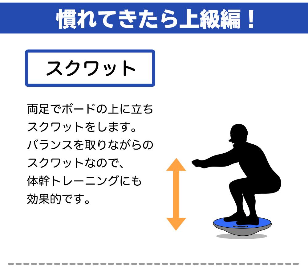 バランスボード 直径40cm  コア 体幹 トレーニング 用 ダイエット 姿勢矯正 リハビリ バランス ディスク スピン スーパー ツイストボード エクササイズ ウエスト RIORES