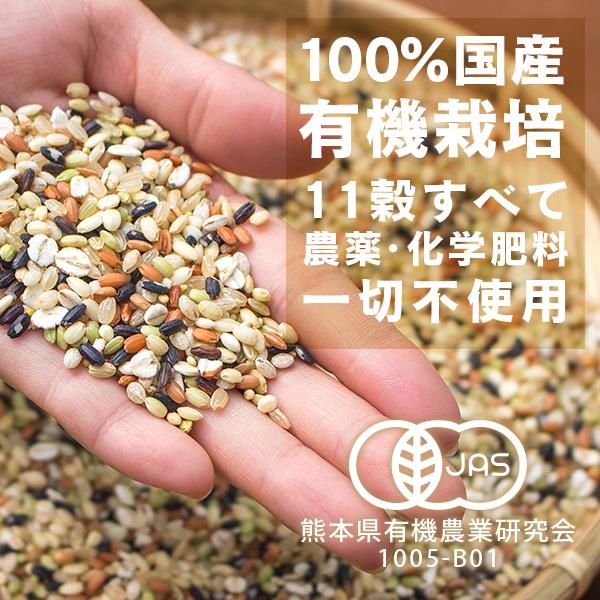 有機 もっちり11雑穀 300g×2個セット