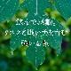 グリーン パパイヤ リーフティー 30g