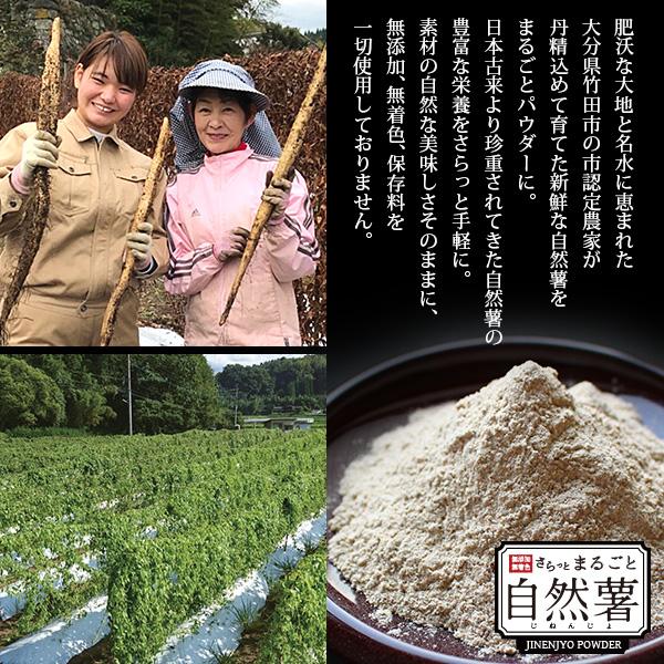 さらっとまるごと自然薯 (じねんじょパウダー) 100g
