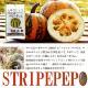 国産 素焼かぼちゃの種 〜わっさむペポナッツ 〜 100g