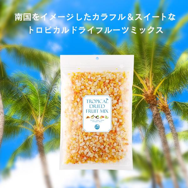 <夏季限定>トロピカル ドライフルーツ ミックス 500g