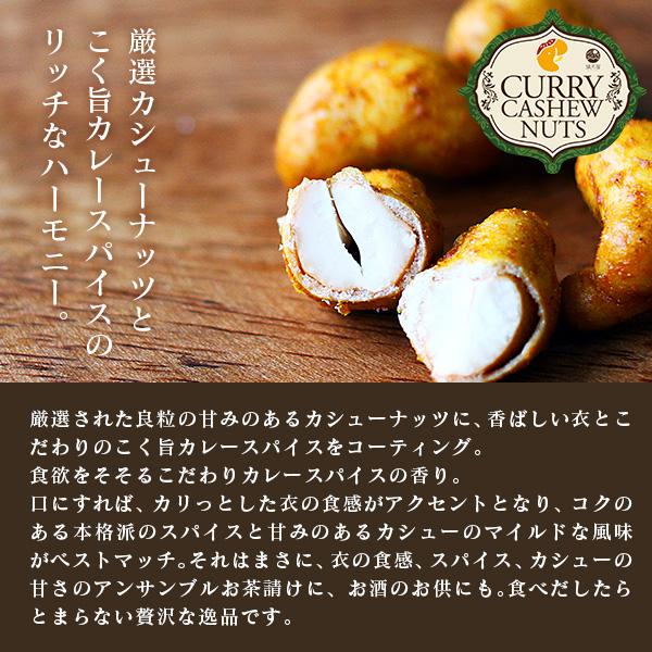 カレーカシューナッツ 〜こく旨 スパイス仕立て〜 300g×2個セット