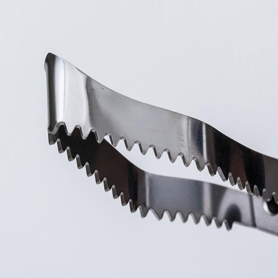 津本式道具 TINY 血合いウロコ取り<br>津本式 血抜き 雑誌 鮮魚