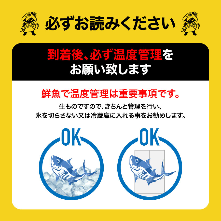 【養殖 西米良サーモン 】 重量約2.0~2.5kg 津本光弘本人仕立て究極の血抜き 宮崎県から発送