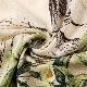 50%OFF SALE!!ボタニカル柄 ドレス セットアップ トップス+ロングスカート