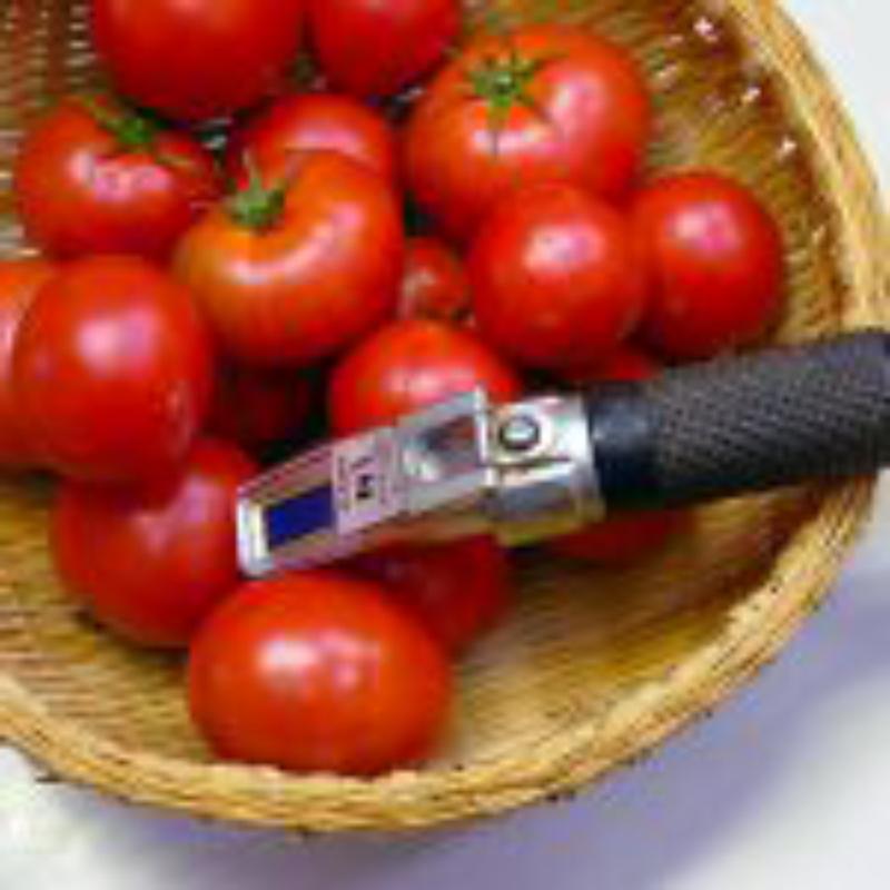 コピーテスト---岡崎農園 100日トマトの食べるトマトジュースと濃厚コクうまケチャップのセット