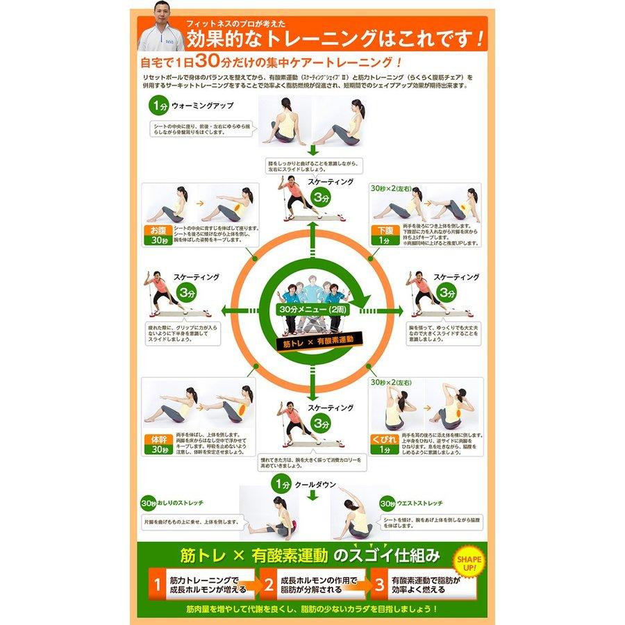 ホームサーキットセット(コアシート&スケーティングシェイプIII)