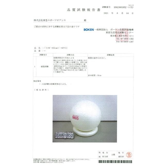 バランスボール 55cm (リングとポンプ付)