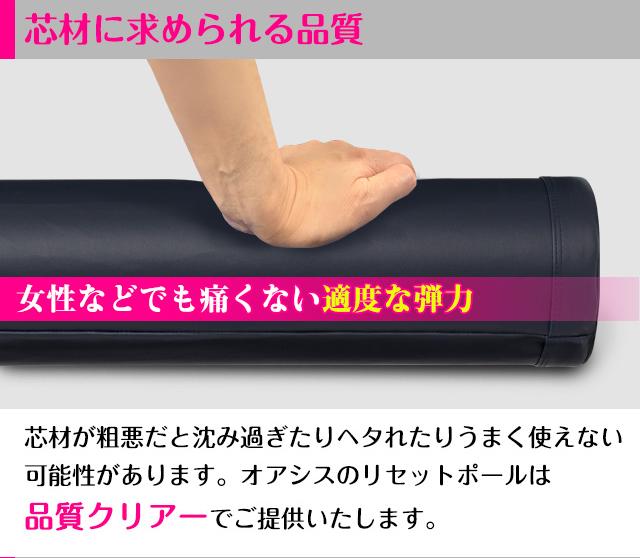 リセットポール RP-800 入門編