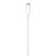 アップル純正  Apple USB-C - Lightningケーブル(1 m) MX0K2FE/A  国内純正品  送料無料【メール便の場合】