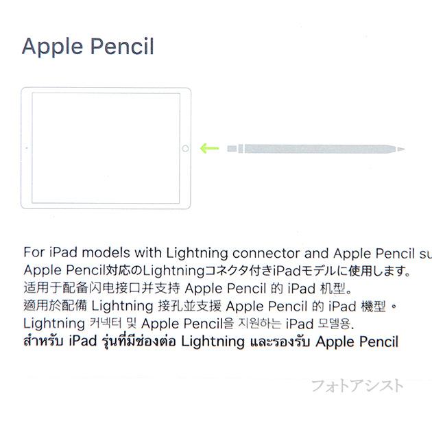 アップル純正 Apple Pencil アップルペンシル  MK0C2J/A  国内純正品