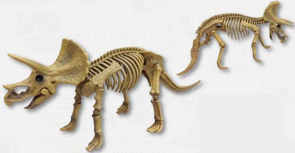 ポーズスケルトン恐竜シリーズ102 トリケラトプス