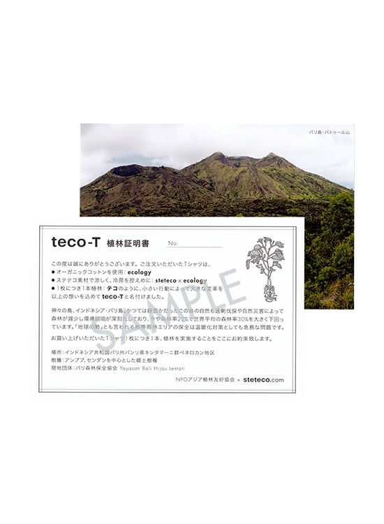 【受注生産】 teco-T (The houses near my house)