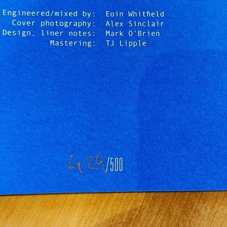 ENEMIES / We've Been Talking  LP(BLUE)+MP3