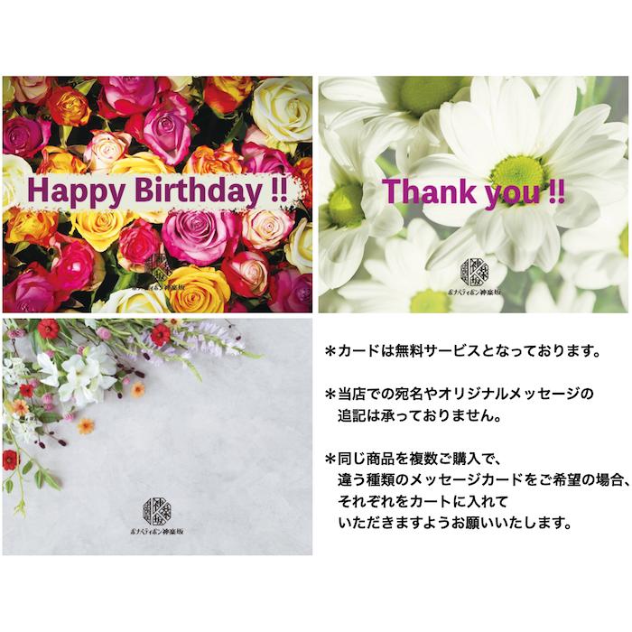 B.B.ジェラート 12個入 (クール冷凍便)