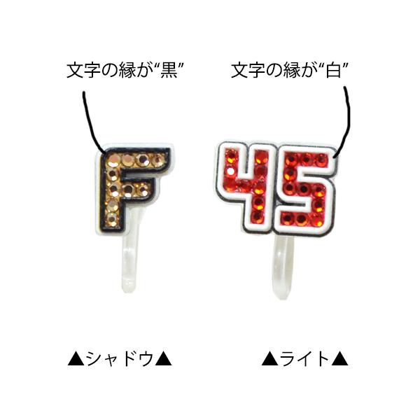 富士通フロンティアーズ オリジナルイヤリング