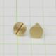 真鍮 生地 組ネジ Mサイズ シカゴスクリュー 螺子 ネジ式 マイナス 金具 パーツ 金色 古美金