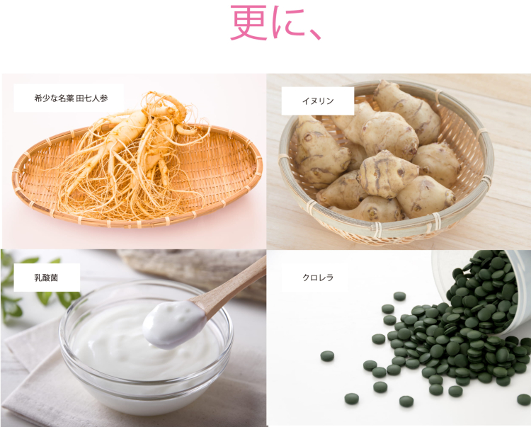 【2パック】 いちたす ダイエットサポートサプリ ギムネマ&サラシア 30〜60日分×2セット (240粒)