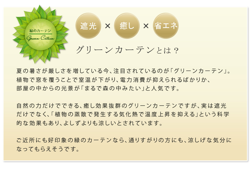 アイアン製グリーンカーテン アーガイル IF-GC011BLK