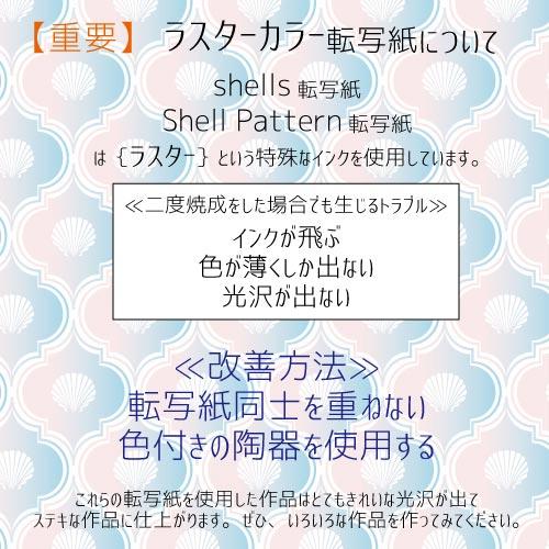 Shells 転写紙