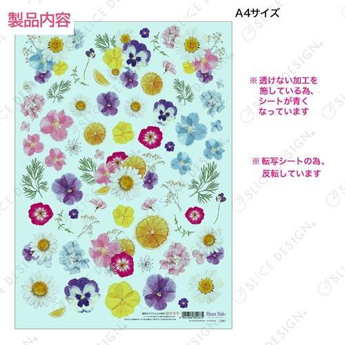 【オーブン転写紙】押し花(キャンディポップ)