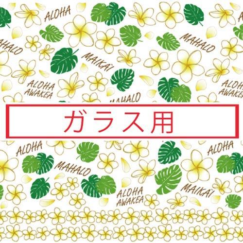 【ガラス用】Aloha!!-プルメリア-