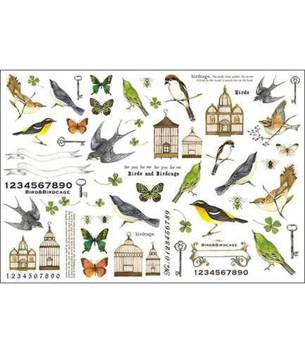 鳥と鳥かご002