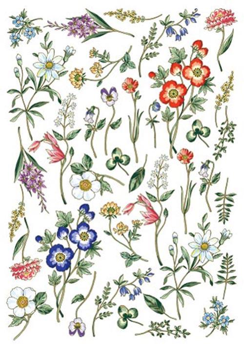 botanist day