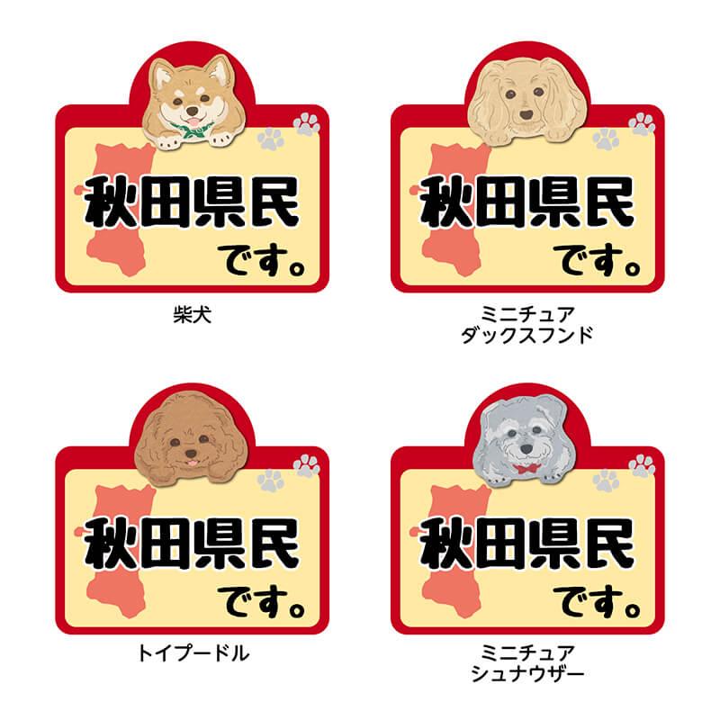 【秋田県】県民です。わんこステッカー 2枚セット(ステッカー 雑貨 カー用品 日本製) 在住 都道府県 県内在住