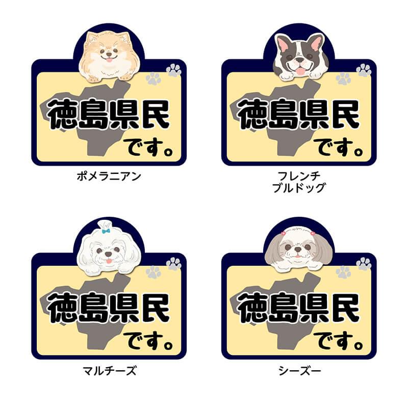 【徳島県】県民です。わんこステッカー 2枚セット(ステッカー 雑貨 カー用品 日本製) 在住 都道府県 県内在住