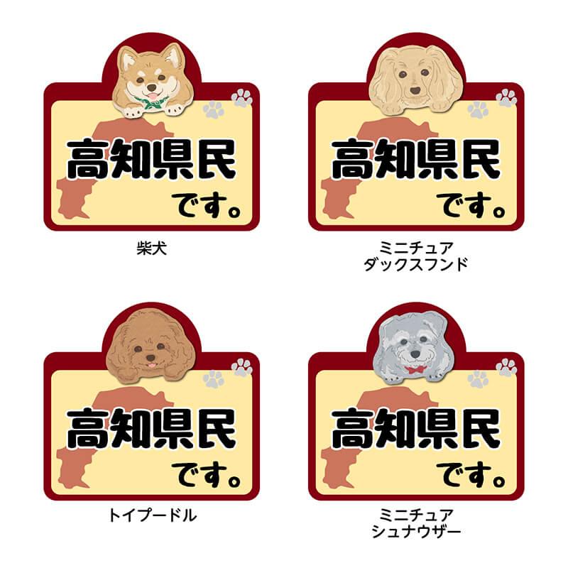 【高知県】県民です。わんこステッカー 2枚セット(ステッカー 雑貨 カー用品 日本製) 在住 都道府県 県内在住