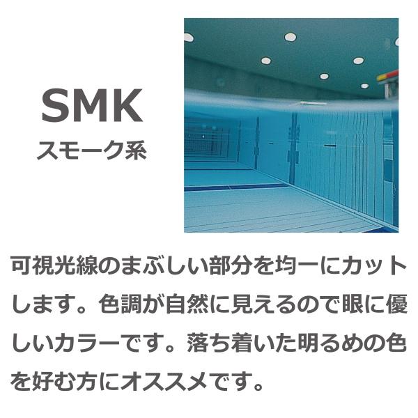SW-41 SMBK スイミングゴーグル