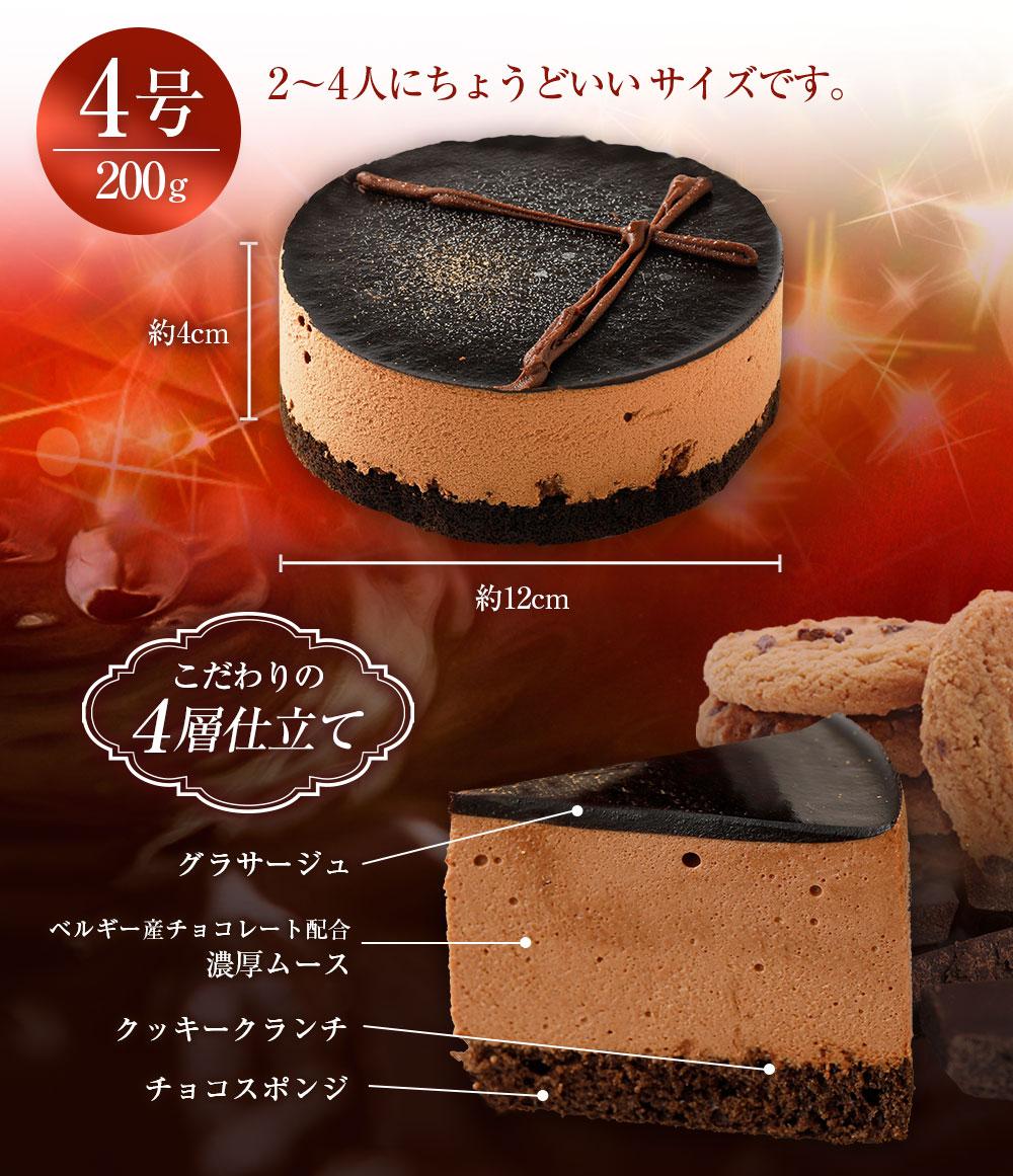 五洋食品 ベルギーチョコムース 200g 1個入 4号 チョコレート ムース ケーキ 冷凍 業務用 スイーツ デザート 冷凍ケーキ お手軽