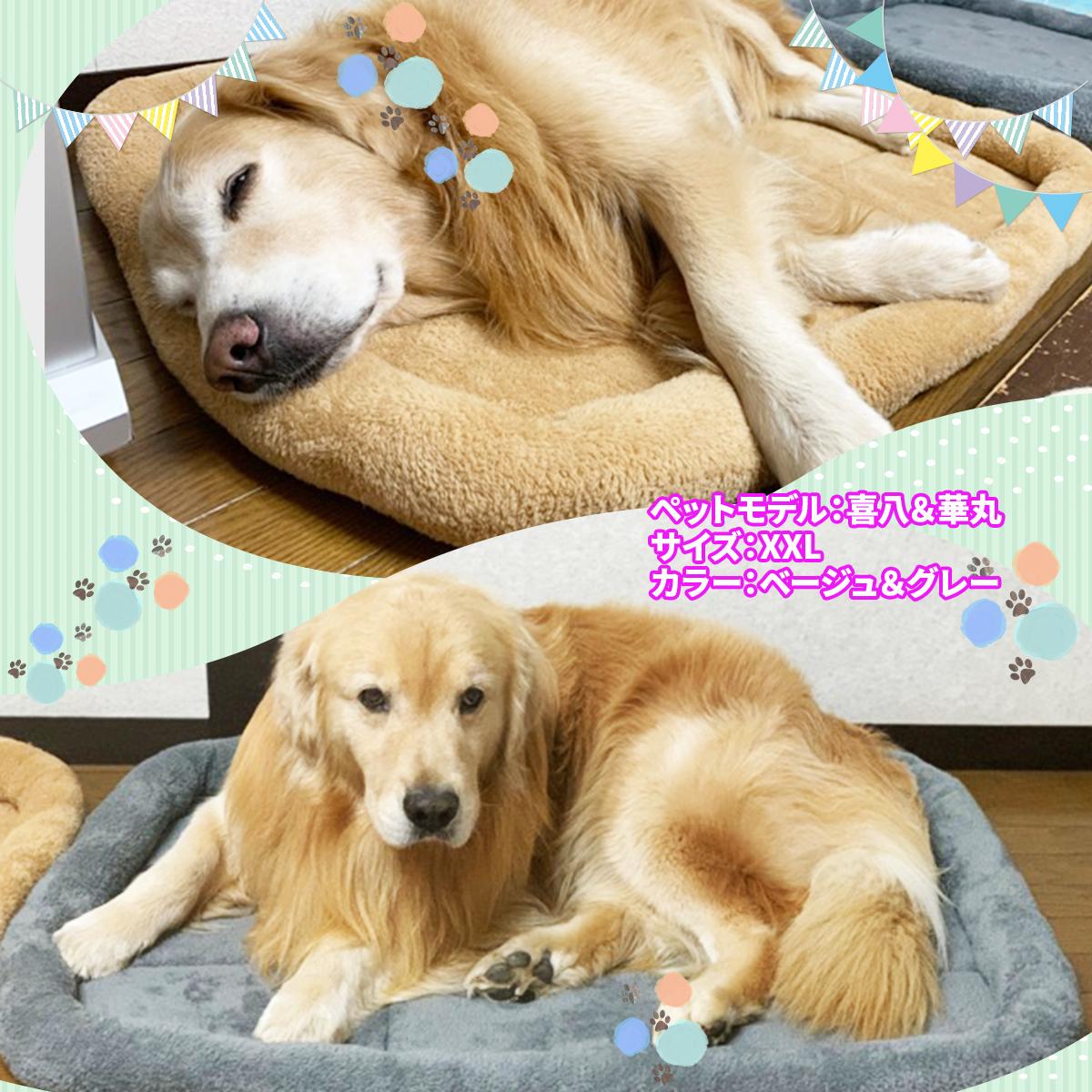 PetStyle シンプル ペット用ベッド・マット 中型 大型 犬 猫 XXLサイズ